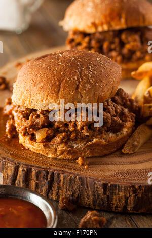 Homemade BBQ Sloppy Joe Sandwiches with Fries - Stock Photo