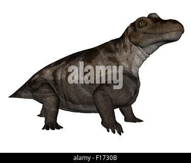 Keratocephalus dinosaur isolated in white background - 3D render - Stock Photo