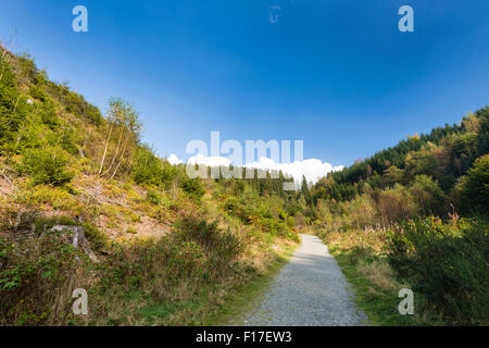 Footpath in the Bayehon Valley, High Fens, Ardennes, Belgium - Stock Photo