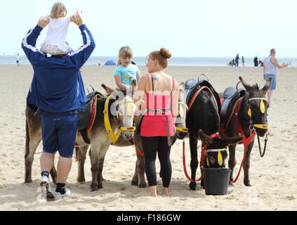 Great Yarmouth, UK. 29th Aug, 2015. Children having donkey rides on the beach in the August Bank Holiday sunshine - Stock Photo