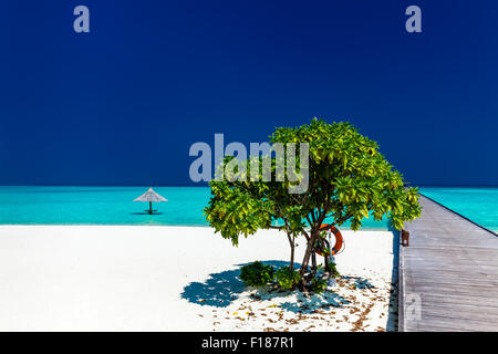 Beautiful tropical sandy beach with wodden jetty and single small tree - Stock Photo