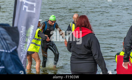Crosby open water swim event, on 29th August 2015 held at Crosby Lakeside Adventure Centre. organised by Vital Events. - Stock Photo