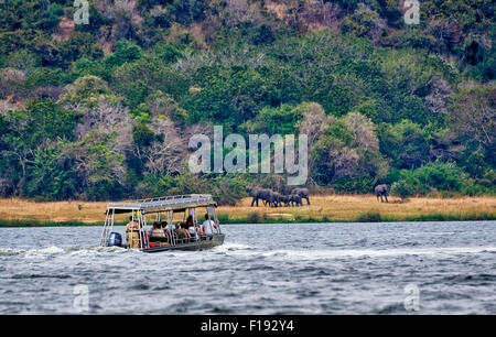 tourist boat on river Nile on the way to Murchison Falls, landscape with elephants behind, Murchison Falls National - Stock Photo