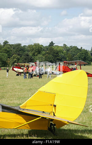 DH.82 Tiger Moths  lined up at the International DH Moth Rally at Woburn Abbey August 2015 - Stock Photo