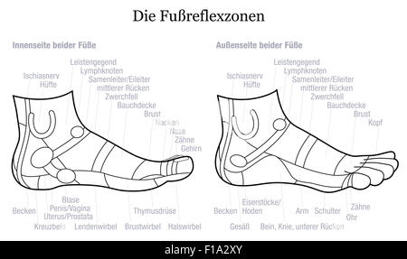 Foot reflexology chart - inside and outside view of the feet - with description in GERMAN LANGUAGE. - Stock Photo