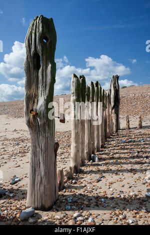 Old wooden sea defences, breakwater groynes on a sunny day at Rye Harbour near Winchelsea beach, East Sussex, England, - Stock Photo