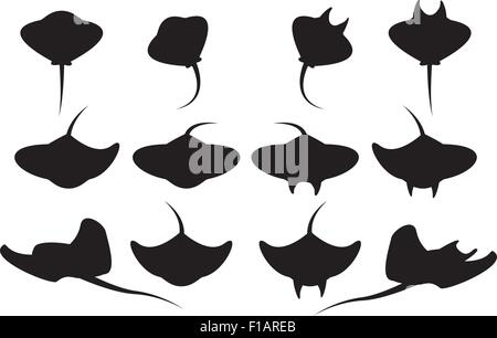 Set of stingray silhouette and icons in simple style. vector illustration. - Stock Photo