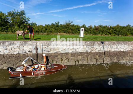Female donkey Violka, Bata Canal, port Straznice Petrov, South Moravia, Czech Republic, Europe Bata Canal is a navigable - Stock Photo