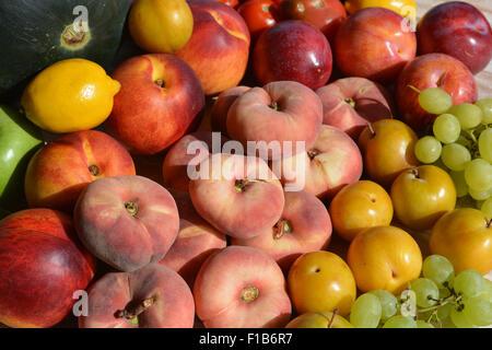 Fresh fruit.  Grapes, Red & Yellow Plums, Paraguaya peaches, Nectarines, Lemons,  Apple, Watermelon, - Stock Photo