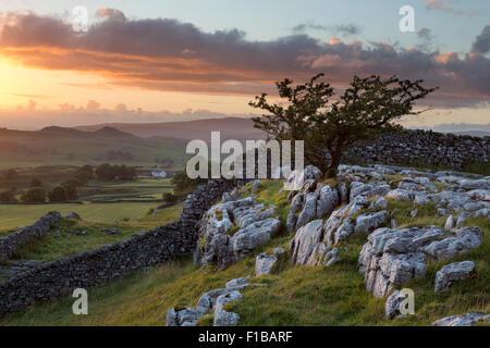 Winskill Stones, Ribblesdale, Yorkshire Dales, UK