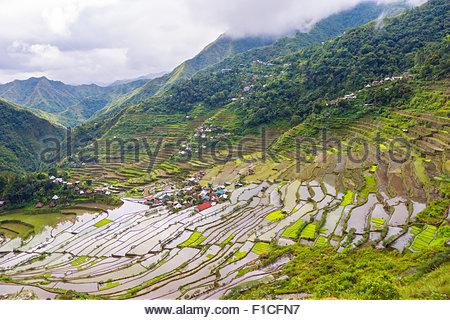 Batad rice terraces and village, Banaue, Mountain Province, Cordillera Administrative Region, Philippines - Stock Photo