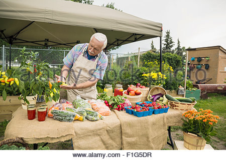 Senior farmer checking produce farmers market stall - Stock Photo