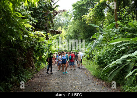 Costa Rica, Central America, view of Manuel Antonio National Park. Jungle, forest, rainforest, visitors, people - Stock Photo