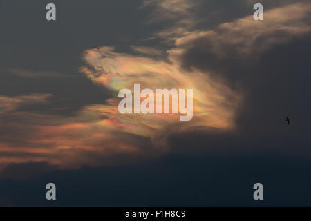 Iridescence clouds, Nacreous, clouds or mother of pearl. - Stock Photo