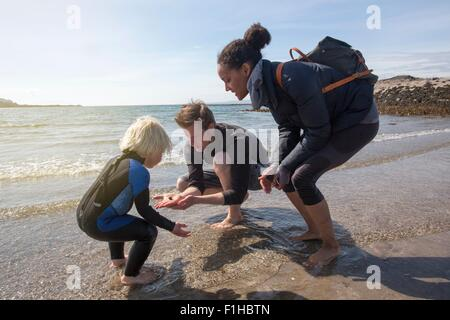 Family finding animal on beach, Loch Eishort, Isle of Skye, Hebrides, Scotland - Stock Photo