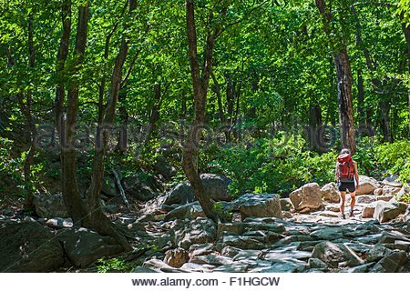 Woman hiking over a rocky trail on the way to Mt. Ulsanbawi at Seoraksan national park, Gangwon, South Korea - Stock Photo