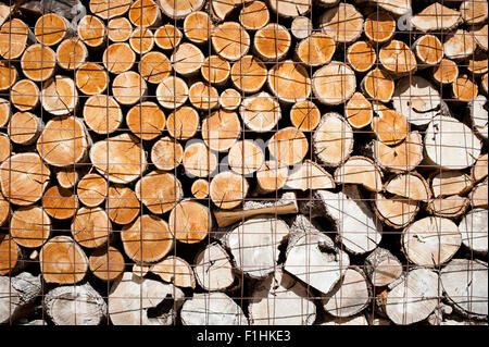 Logs stacked and stored ready to be used - Stock Photo