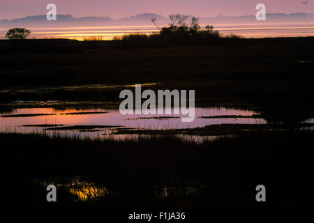 Sunset on Assateague, in mist of warmer weather over snow - Stock Photo