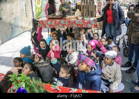 diverse group small preschool girls on outing to Union Square greenmarket eagerly raise their hands in question - Stock Photo