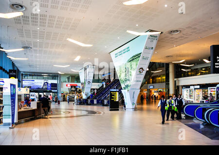 International Terminal, Cape Town International Airport, Cape Town, Western Cape Province, Republic of South Africa - Stock Photo