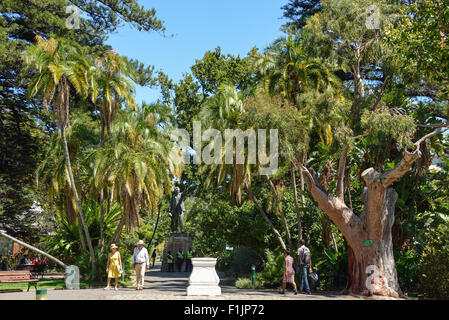 The Public Garden, The Company's Garden area, Cape Town, Western Cape Province, Republic of South Africa - Stock Photo