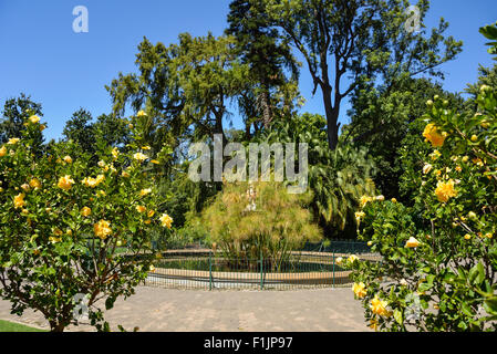 Thorne Fountain in The Public Garden, Cape Town, Western Cape Province, Republic of South Africa - Stock Photo
