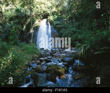 Waterfall and stream in forest. Maria Shiles Waterfall near Sabie, Mpumalanga, South Africa, Africa. - Stock Photo