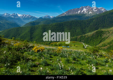 The road to col d Aspin, national park of Pyrenees, Hautes Pyrenees, France - Stock Photo