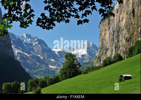 Alpine meadow with barn / raccard in the Lauterbrunnen Valley, Bernese Oberland, Swiss Alps, Switzerland - Stock Photo