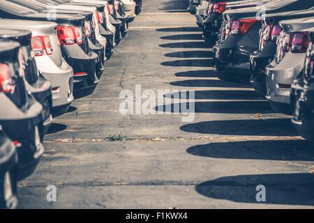 Brand New Cars For Sale. Two Car Rows. Dealer Stock. - Stock Photo