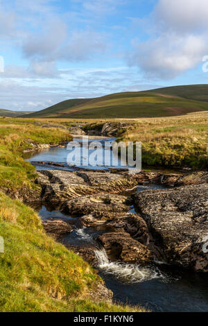 River running through grass fields in the open country side of Cambrian Mountains in Wales UK - Stock Photo