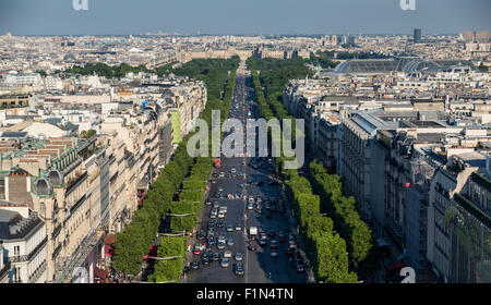 Pollarded trees lining the Avenue des Champs Elysees. Late afternoon view toward Louvre from the top of the Arc - Stock Photo