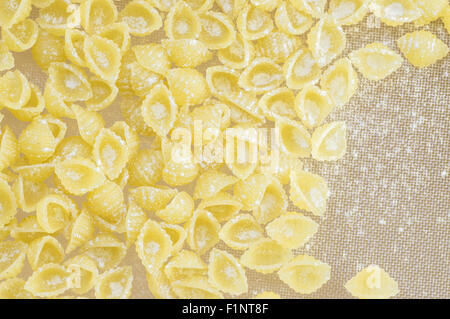 Pasta conchigliette in flour on the table top view - Stock Photo
