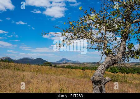 Chongoni Rock-Art Area, UNESCO World Heritage Site, Malawi, Africa - Stock Photo
