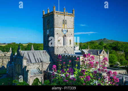 St. Davids Cathedral, Pembrokeshire, Wales, United Kingdom, Europe - Stock Photo