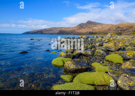 Loch Buie, Isle of Mull, Inner Hebrides, Argyll and Bute, Scotland, United Kingdom, Europe - Stock Photo