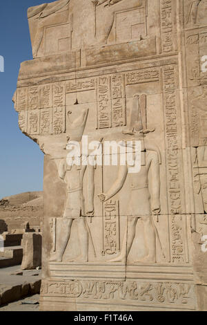 Bas-relief of the Gods Sobek on right and Horus on left, Temple of Haroeris and Sobek, Kom Ombo, Egypt, North Africa, - Stock Photo