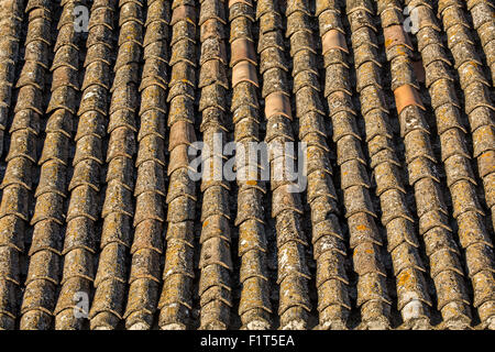 Clay roof tiles on Mediterranean house covered in old lichen - Stock Photo
