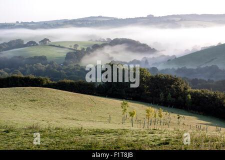 early morning mist rising over the Teign Valley,Devon,Doddiscombsleigh Village of DoddiscombsleighHaldon,autumn, - Stock Photo