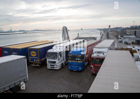 Lorries on Stena Lines ferry, Port of Rotterdam, Hook of Holland, Netherlands - Stock Photo