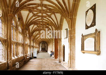Wells Cathedral cloisters interior, Wells, Somerset England UK - Stock Photo