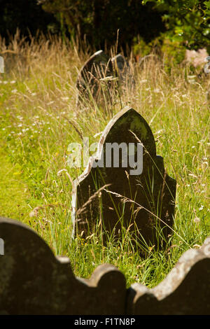 Overgrown graveyard in Bishops Castle, Shropshire. - Stock Photo