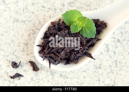 how to make tea from fresh mint leaves