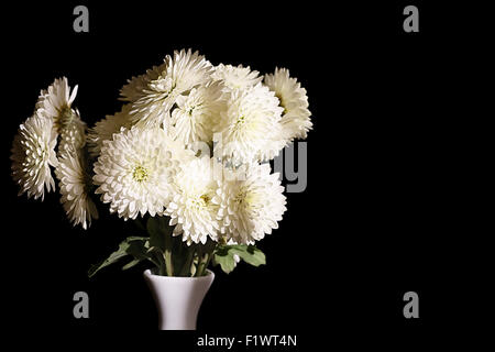 beautiful white flowers in vase on the black background. - Stock Photo
