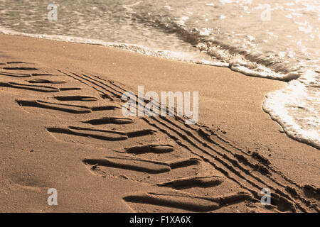 Tire tracks on the sand near sea. - Stock Photo