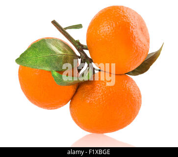 ripe tangerines with leaves isolated on white. - Stock Photo