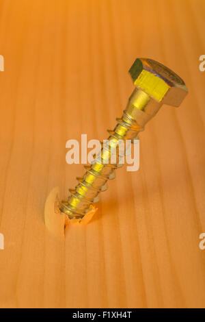 Concept of turn the screw, pressurize, pressure. Photo of steel screw embedded in pine wood. - Stock Photo