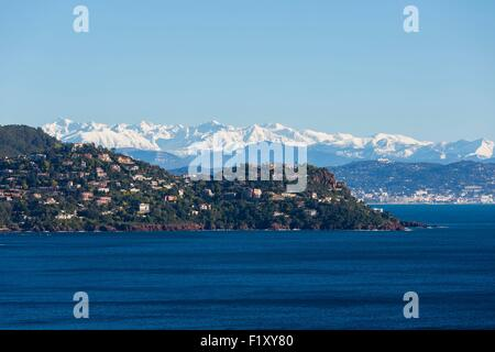 France, Alpes Maritimes, Theoule sur Mer, gulf of Napoule, Cannes and snowy mountains of Mercantour in the background - Stock Photo