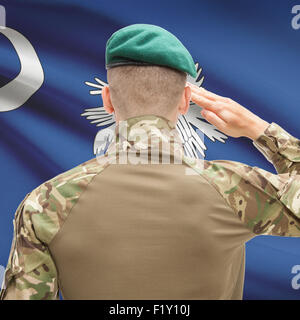 Soldier saluting to US state flag series - South Carolina - Stock Photo