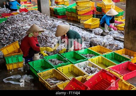 Vietnam ba ria vung tau province vung tau beach for Long beach fish market